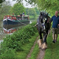 Horse-drawn Barge & Cream Tea & Cake