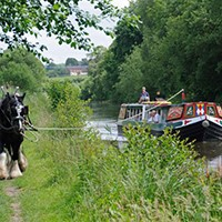 Horse-drawn Barge with Ploughmans Lunch