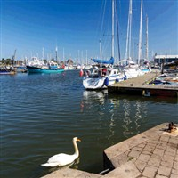 Lymington for Market Day