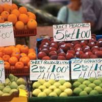 Salisbury for Market Day