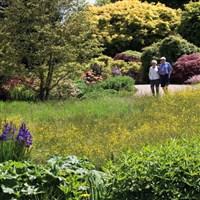 RHS Wisley Gardens Flower Show WC