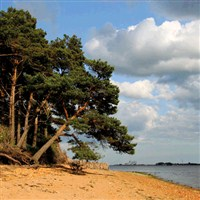 Brownsea Island WC
