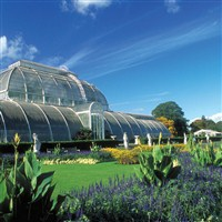 Royal Botanical Gardens, Kew (Coach Fare Only)
