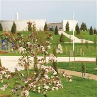 National Memorial Arboretum .
