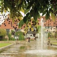 RHS Wisley Gardens, A Taste of Autumn