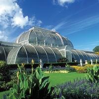 Kew Palace & Gardens