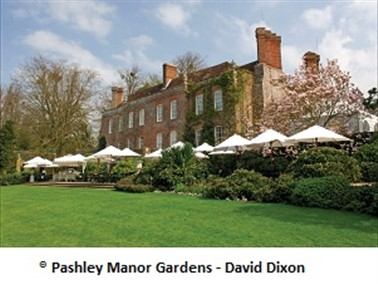 Pashley Manor Dahlia Day