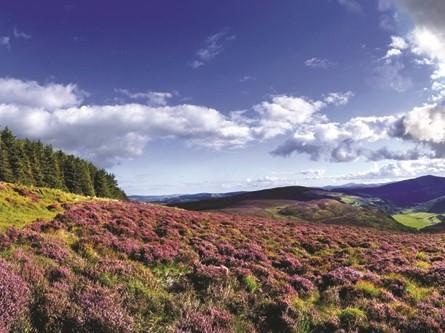 Wicklow National Park ©Tourism Ireland