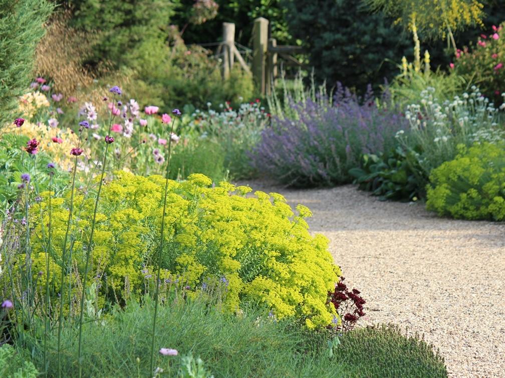 Beth Chatto June Gravel Garden