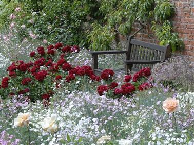Cranborne Manor Garden & Garden Centre *