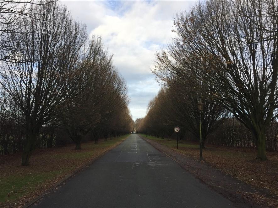Crewe Hall - Drive