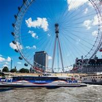 Greenwich Cruise & London Eye Flight