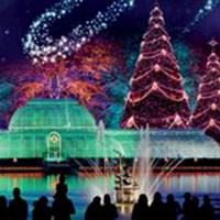 Christmas Lights at Kew