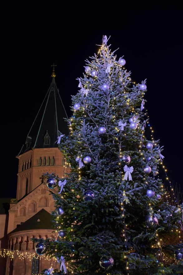 Mainz Christmas tree cathedral