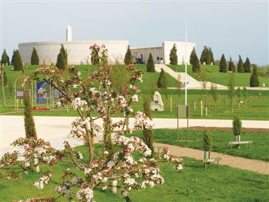 National Memorial Arboretum - Armed Forces Weekend