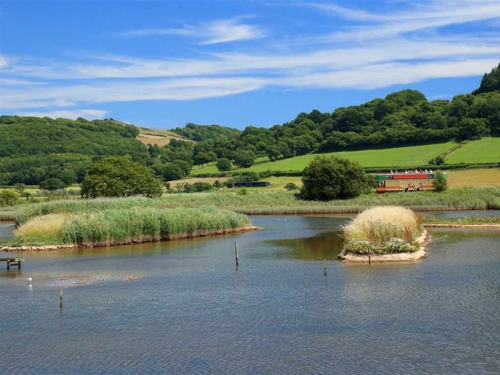 Seaton Wetlands and Tramway