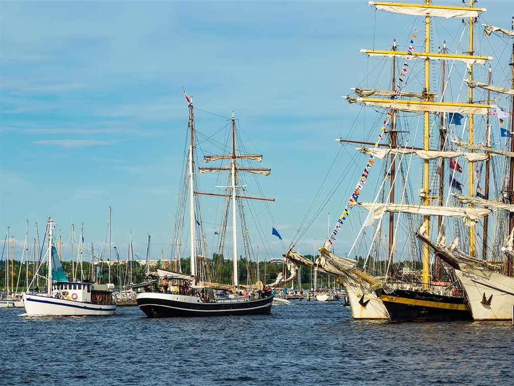 Tall Ships Race in Belgium