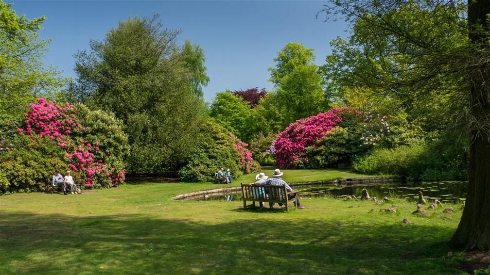 Tatton Park-Summer in the Gardens_Maria Hiles