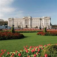 Buckingham Palace & Gardens Tour