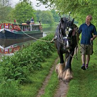 Horse Drawn Barge Trip & Ploughman's Lunch
