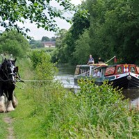 Horsedrawn Barge Afternoon Cruise