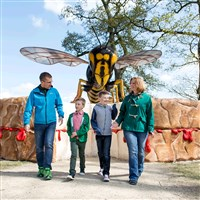 Big Bug Takeover at Longleat