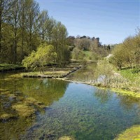 Derbyshire Delights