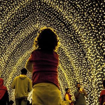 Illuminated Trail, Blenheim Palace