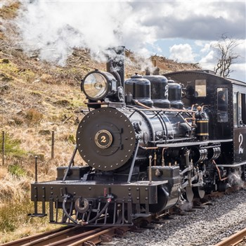 Brecon Mountain Railway and Afternoon Tea