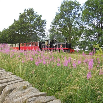 Holmfirth and Kirklees Light Railway